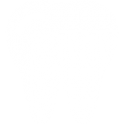 006-molar-tooth